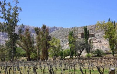 day-tour-to-cafayate-and-calchaqui-valleys1