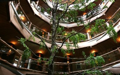 nothofagus-hotel-and-spa4