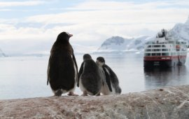 Ultimate Antarctic Experience5