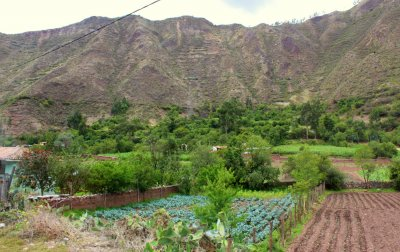 Sacred Valley 5