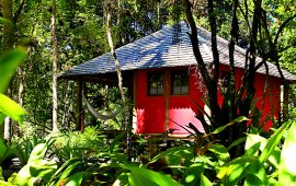 red bungalow in the middle of nature