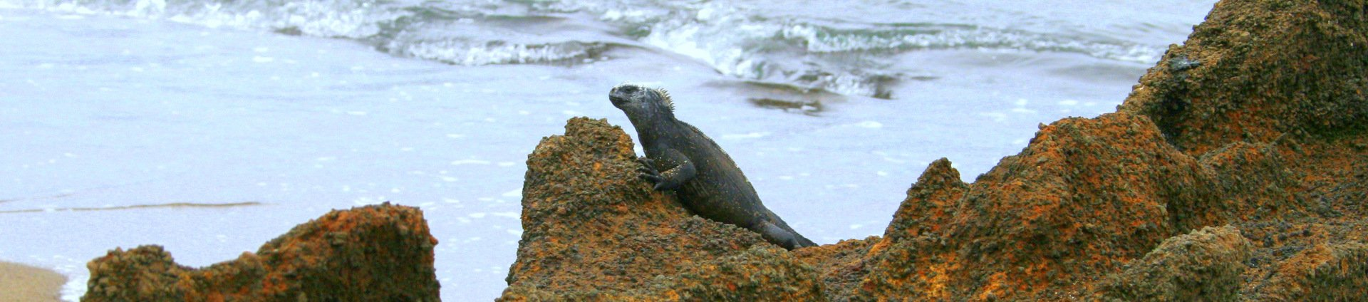 5 Day Eastern Galapagos