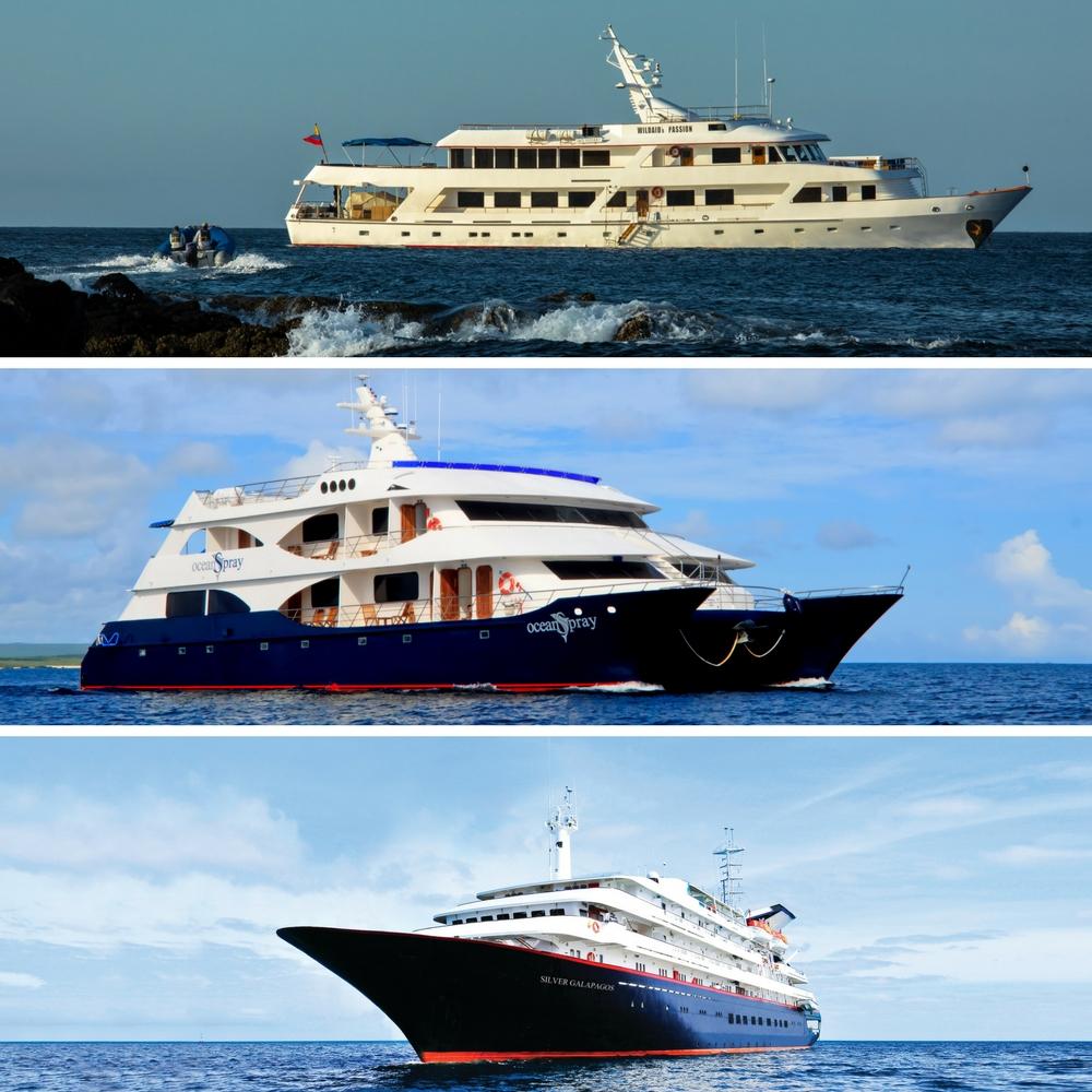 Cruise ship, Yacht and Catamaran